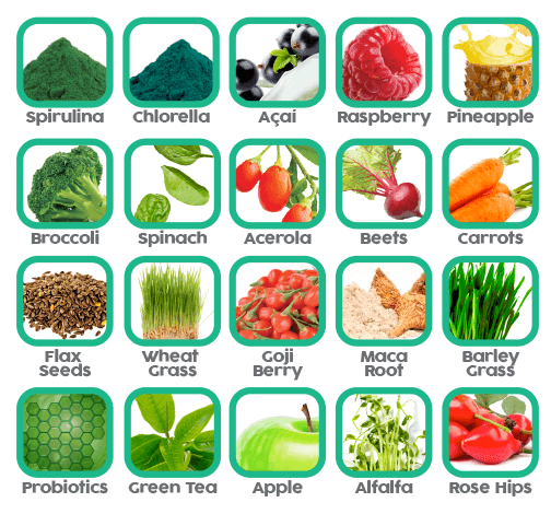 A list of ingredients on PhytoFood which include spirulina, chlorella, kale, spinach, pineapple, probiotics, bamboo, chia, wheat grass, barley grass and more