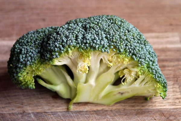 A close up image of a broccoli. Is it a coincidence that its shape is similar to the brain?